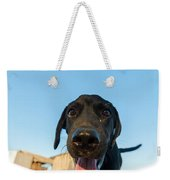 Playful Dog Closeup Weekender Tote Bag