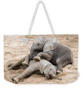 Playful Elephant Calves Weekender Tote Bag