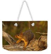 Playful Weekender Tote Bag