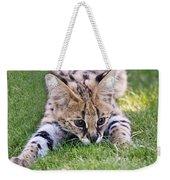 Playful Serval Weekender Tote Bag