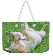 Playful Yellow Labrador Retriever Puppy Weekender Tote Bag by Jennie Marie Schell