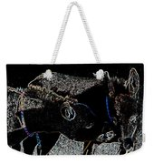 Playing Burros Weekender Tote Bag