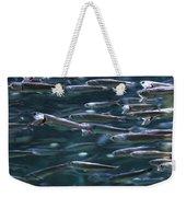 Plenty Of Fish In The Sea Weekender Tote Bag