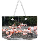 Plenty Of Pink Weekender Tote Bag