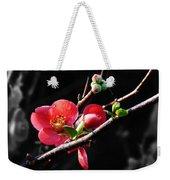 Plum Blossom 3 Weekender Tote Bag