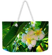 Plumeria Beauty Weekender Tote Bag