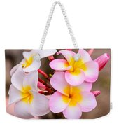 Plumerias Of Paradise 12 Weekender Tote Bag