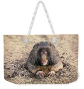 Pocket Gopher Chatting Weekender Tote Bag