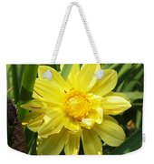 Pocketful Of Sunshine Weekender Tote Bag