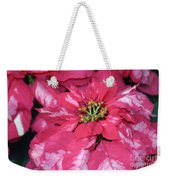 Poinsettia Passion Weekender Tote Bag