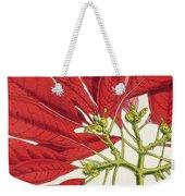 Poinsettia Pulcherrima Weekender Tote Bag by WG Smith