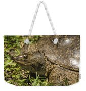 Pointed Nose Florida Softshell Turtle - Apalone Ferox Weekender Tote Bag