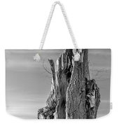 Pointing To The Heavens - Bw Weekender Tote Bag