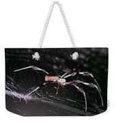 Points Of Contact - Spider - Orb Weaver Weekender Tote Bag