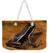 Poison Dart Frog Portrait Amazonian Weekender Tote Bag