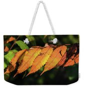 Poison Sumac Golden Kickoff To Fall Colors Weekender Tote Bag