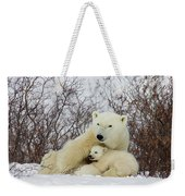 Polar Bear And 3 Month Old Cubs Weekender Tote Bag