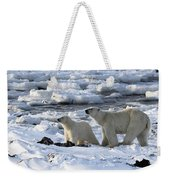 Polar Bear Mother And Cub Sniffing The Air Weekender Tote Bag