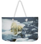 Polar Bear With Cubs On Pack Ice Weekender Tote Bag