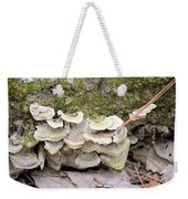 Polypore Abstract Weekender Tote Bag