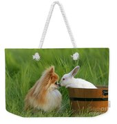 Pomeranian With Rabbit Weekender Tote Bag