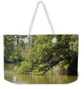 Pond At Norfolk Botanical Garden 10 Weekender Tote Bag