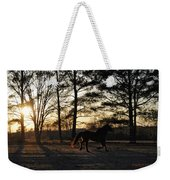 Pony's Evening Pasture Trot Weekender Tote Bag