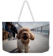 Poodle Dog Weekender Tote Bag
