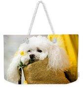Poodle In Pouch Weekender Tote Bag