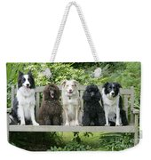 Poodles And Other Dogs On A Bench Weekender Tote Bag
