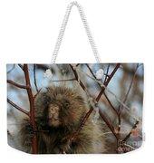 Porcupine And Berries Weekender Tote Bag
