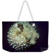 Porcupinefish Weekender Tote Bag