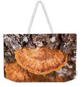 Poria Shelf Fungi 1 Weekender Tote Bag
