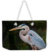 Portrait Of A Blue Heron Weekender Tote Bag