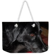 Portrait Of A Border Collie Weekender Tote Bag