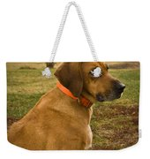 Portrait Of A Dog Weekender Tote Bag