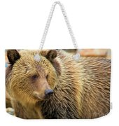 Portrait Of A Grizzly Weekender Tote Bag
