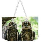 Portrait Of A Pair Of Owls Weekender Tote Bag