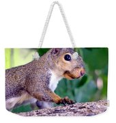 Portrait Of A Squirrel Weekender Tote Bag