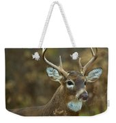Portrait Of A White Tailed Buck Weekender Tote Bag