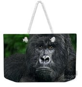 Portrait Of A Wild Mountain Gorilla Silverbackhighly Endangered Weekender Tote Bag
