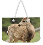 Pose In The Rockies Weekender Tote Bag