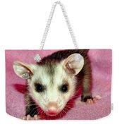 Poser Possum Weekender Tote Bag