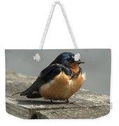 Posing Barn Swallow Weekender Tote Bag