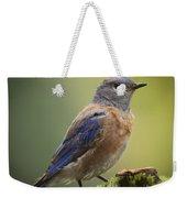 Posing Bluebird Weekender Tote Bag