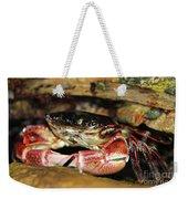 Posing Crab Weekender Tote Bag