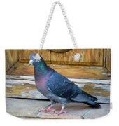 Posing Pigeon  Weekender Tote Bag