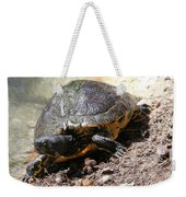 Possible Cooter Turtle Weekender Tote Bag