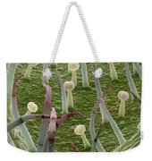 Potato Leaf Sem Weekender Tote Bag