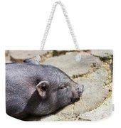 Potbelly Pig Weekender Tote Bag